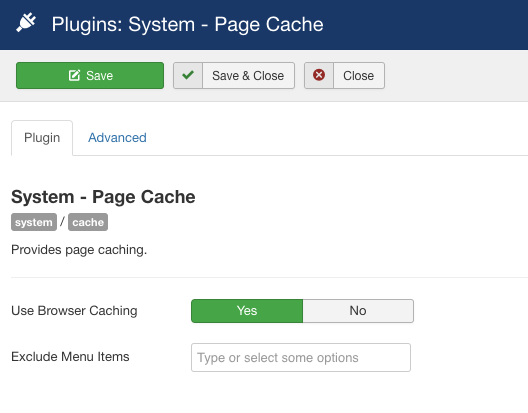 Enable browser caching from plugin manager