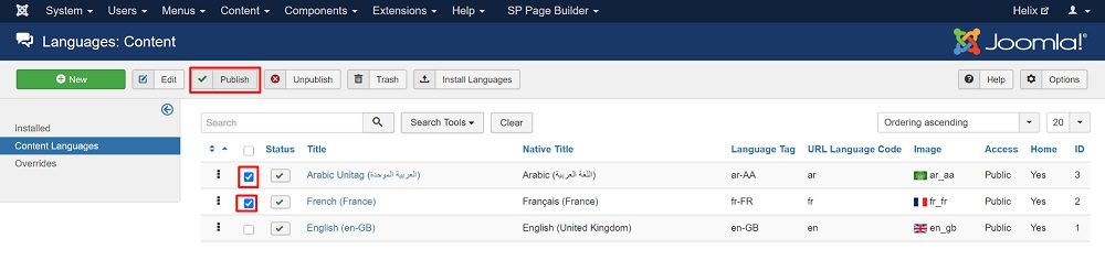 Multilingual Joomla Site