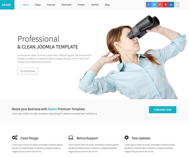 Shaper Radon - Responsive Joomla Business Template